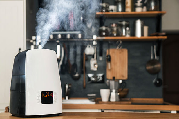 4 Reasons Why You Need a Home Humidifier This Winter